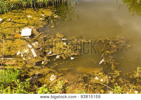Pollution Filled Dirty Water Pond
