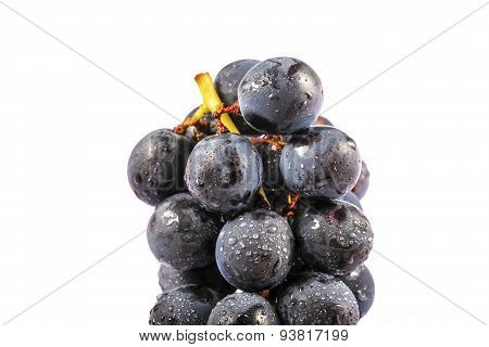 Juicy Purple Grapes