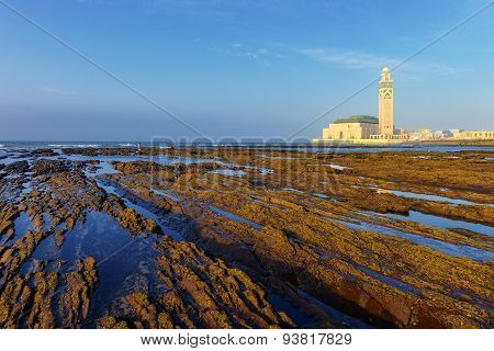 Detail Of Bare Rocks Because Of Low Tide At Casablanca, Morocco.