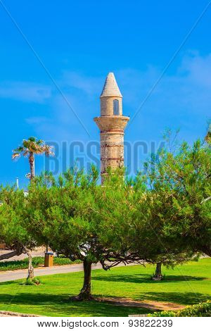 The minaret of the trees. National park Caesarea on the Mediterranean Sea