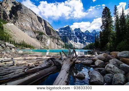 Drift wood at moraine lake