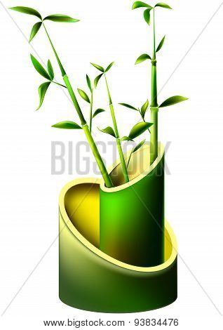 Vase Of Bamboo With Young Bamboo Shoots