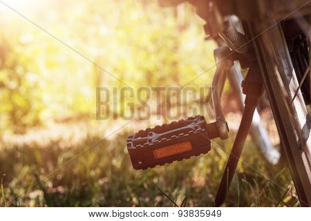 Pedal Of Bicycle In Nice Nature Landscape And Shiny Sunny Weather