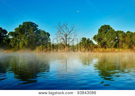 picturesque reflective landscape of river with misty fog in early summer morning