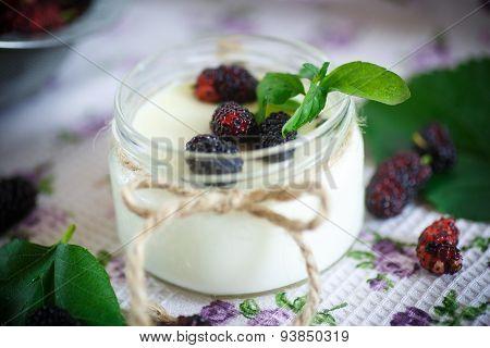 Yogurt With Mulberry