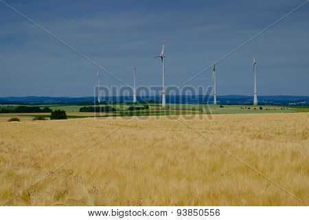 Golden Wheat Field And Wind Turbines