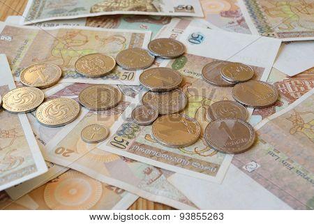 Lari And Tetri Coins