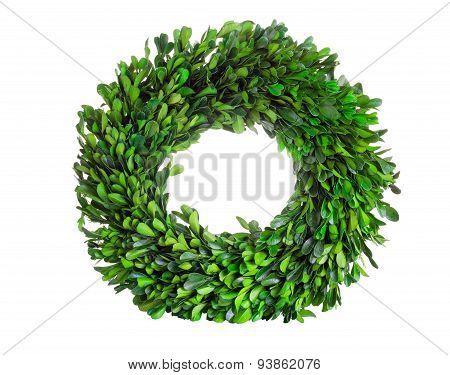 Wreath Made Of Boxwood Leaf Wreath On White Background
