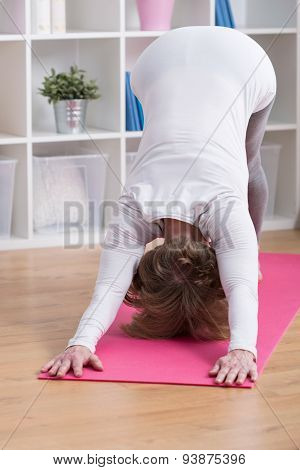 Woman And Dolphin Pose