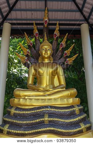 Buddha statue sitting on the king of naga
