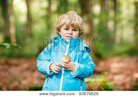Little Toddler  Boy In Blue Waterproof Raincoat In Autumn Forest