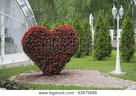 Big Heart (topiary Figure) Of Fresh Flowers In The Park