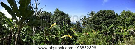 guraici archipelago, Halmahera, Maluku, Indonesia