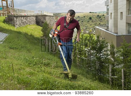 Gardener mowing lawn with lawn mover.