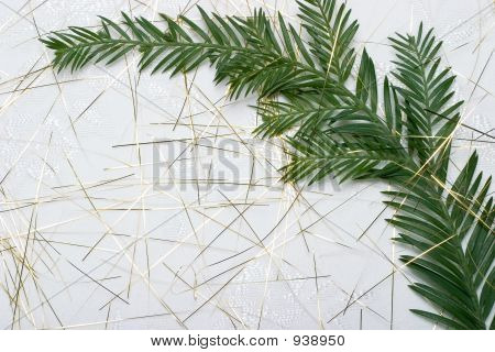 Fir Branch On Holiday Napkin