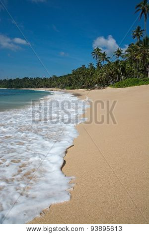 Paradise beach with sand and waves