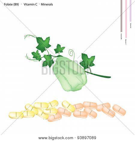Chayote Fruit With Vitamin B9 And Vitamin C