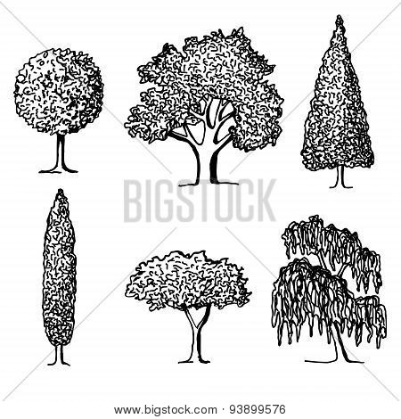 Set of trees in silhouettes.