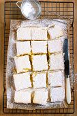 image of icing  - Tangy lemon squares with icing sugar on rack - JPG