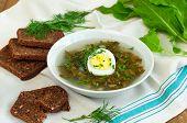 stock photo of sorrel  - Fresh organic soup with sorrel and egg selective focus - JPG