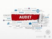 image of financial audit  - Word Cloud Audit concept - JPG
