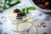image of home addition  - sweet delicious home made yogurt with mulberry - JPG