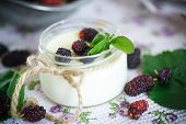 stock photo of mulberry  - sweet delicious home made yogurt with mulberry - JPG