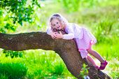 picture of little young child children girl toddler  - Little girl hiking in a forest. Outdoor fun for family in country side. Summer hike with young children. Toddler kid playing in a park climbing a tree. Child running in the woods. Kids and climb. ** Note: Soft Focus at 100%, best at smaller sizes - JPG
