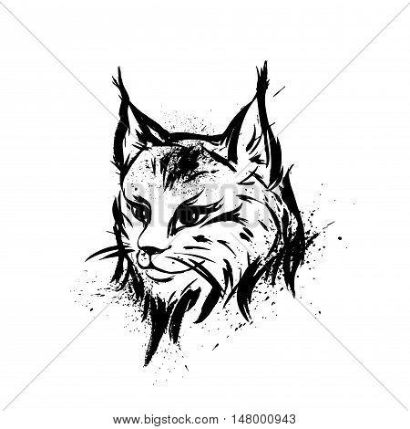 Lynx. Wild cat. Predator. Hand drawn. Black and white. Stylized. Decorative. Vector