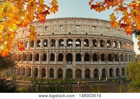 view of Colosseum building in Rome at fall day, Italy