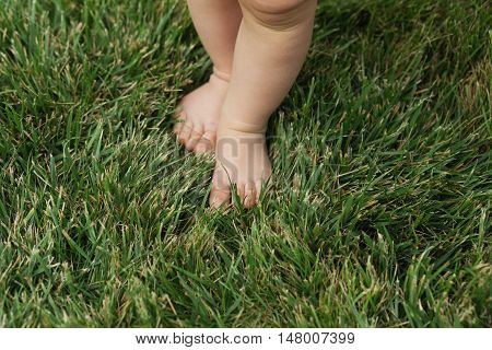 Baby Standing Barefoot On The Green Lawn