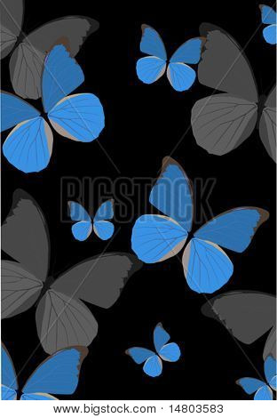 illustration with blue butterfly background