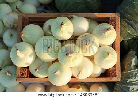 Onion in wooden crate and cabbage with sunlight.
