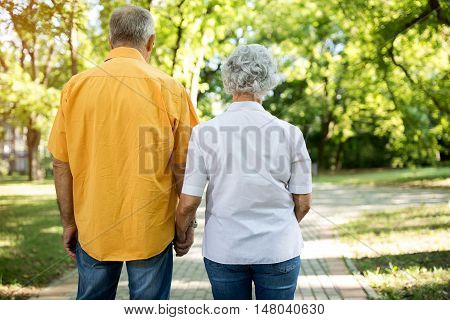 Together Walk Through The Park