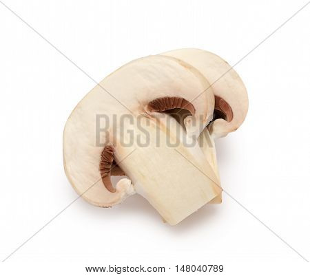 Champignon mushroom isolated on the white background