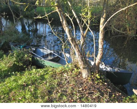 Small Boat In The Swamp Of Poitevin, France