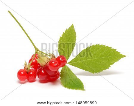 Ripe stone berry with leaves isolated on white background