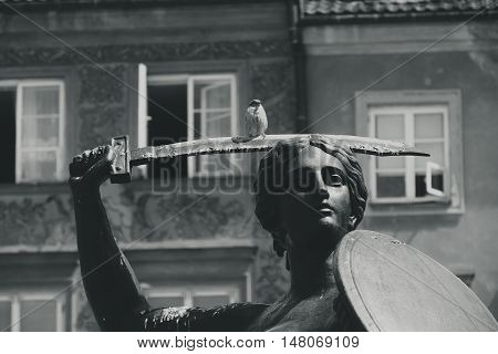 Warsaw mermaid and sparrow on his sword