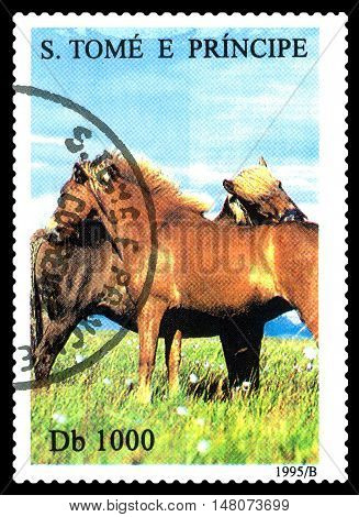 STAVROPOL RUSSIA - SEPTEMBER 18.2016: A stamp printed in Sao Tome and Principe shows Horses circa 1995