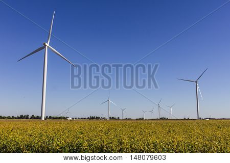 Wind Farm In Central Indiana. Wind And Solar Green Energy Areas Are Becoming Very Popular In Farming