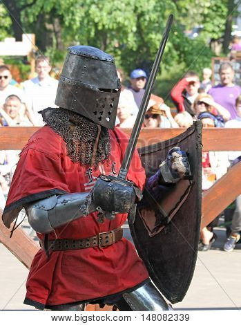 Medieval Knight During Battle
