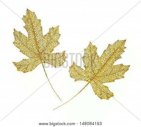Two golden spangles leaves against white background. Christmas motive.