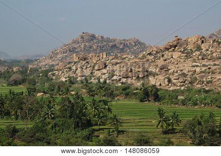 Landscape in Hampi Karnataka. Granite mountain and rice fields. Popular travel destination in India.