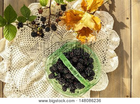 Vintage green glass basket dish full of juicy blackberries with oak leaves and blackberry sprigs on crocheted lace doily cloth on wooden table.
