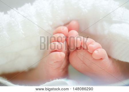 Foot of newborn baby in soft white towels.