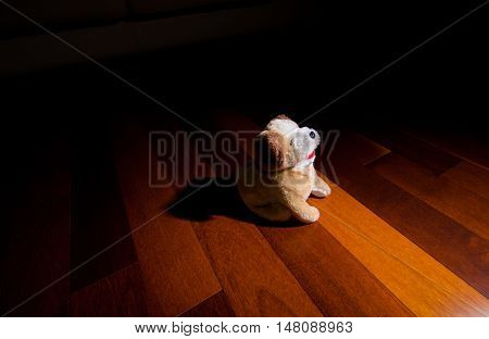 Toy Plush Puppy dog sitting in front of spotlight