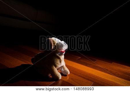 Plush dog doll toy sitting obediently in spotlight