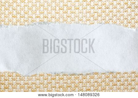 Ragged Piece Of Paper On White