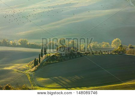 Green Tuscany landscape at morning time, beautiful hills with sunlight and birds - Italy, European agriculture - 11/02/2015, Tuscany, Italy, Europe
