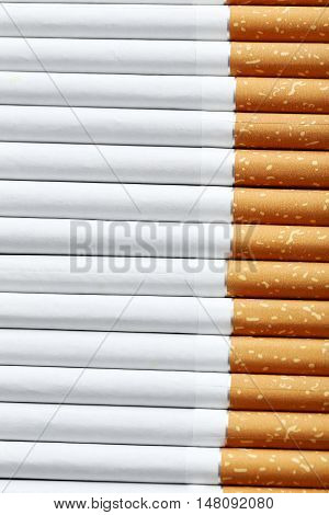 The Tobacco cigarettes background, on close up
